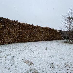 コロナによる外出自粛の週末、我が家は薪割りと雪遊び