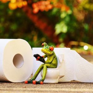 【ベトナム観光のトイレ事情】ベトナムのトイレ使うなら○○を注意!!