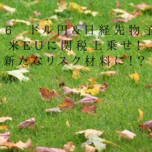 10/16 ドル円&日経先物予想 米EUに関税上乗せ!新たなリスク材料に!?