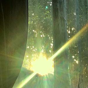 早朝の輝き