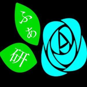 【2021】Fin(フィン)福袋の値段や予約開始日は?中身のネタバレも紹介!
