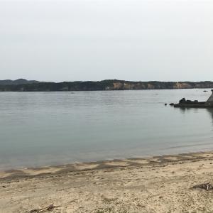 チヌ渚釣り 志摩