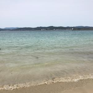 チヌ釣り 志摩&鳥羽