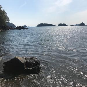 チヌ釣り 紀北町〜南伊勢