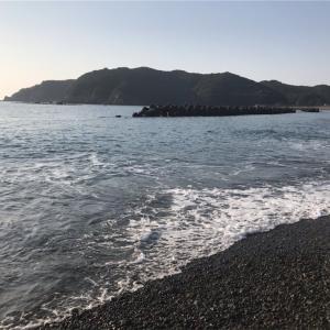 三重県南部でのチヌフカセ、3年目の最初はウネリ、激流の渚釣りから❗️