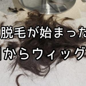 今日からウィッグデビュー! | 医療ウィッグを扱う美容師