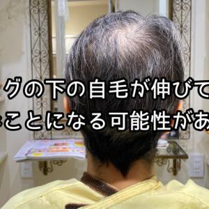 ウィッグを使ってる人あるあるでもあり、伝説にもなる! | がん患者さんの医療用ウィッグを扱う美容師