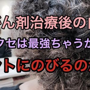 この最強のクセ毛、のびるのか??抗がん剤治療後の自毛のクセ毛…
