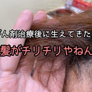 【がん治療後の自毛の相談】前髪がチリチリやねん…  | 抗がん剤治療後の自毛のサポートをする美容師