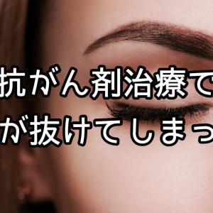 【オススメ】抗がん剤治療の副作用で抜けてしまった眉毛がアートメイクシールで復活!? | 抗がん剤治療中のアピアランスケア