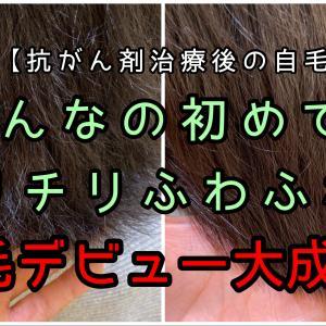 【自毛デビュー】過去に出会ったことのないほどのクセでも自毛デビュー! | 抗がん剤治療後の自毛の相談ができる美容師