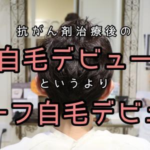 【自毛デビュー】ハーフ自毛デビューしたよ〜。ブログを見てご来店ありがとう! | 抗がん剤治療後の自毛の相談ができる美容師 谷田修一