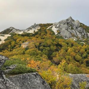 【登山】鳳凰三山③初日の上りは初心者には甘くないルート/南アルプス