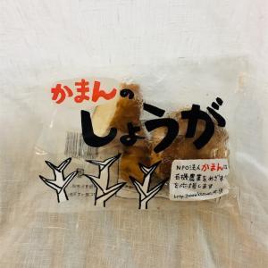 【高知の観光】大人の高知・子どもの高知・山里亮太さんの結婚