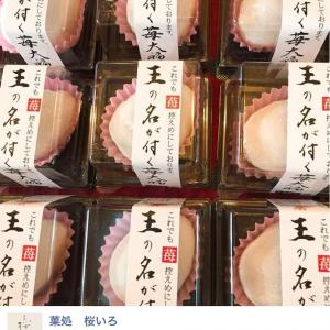 【高知の観光】とっておきの和菓子屋さん「桜いろ」