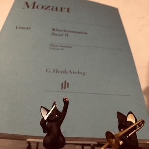 モーツァルト ピアノソナタ 第8番 イ短調 K310 (12)