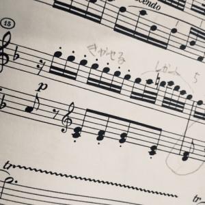 モーツァルト ピアノソナタ 第8番 イ短調 K310  (14)