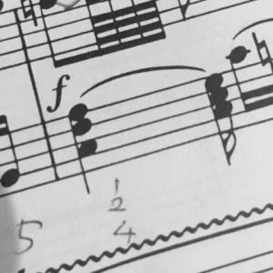 モーツァルト ピアノソナタ 第8番 イ短調 K310  (19)