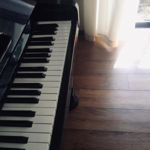 モーツァルト ピアノソナタ 第8番 イ短調 K310  (23)