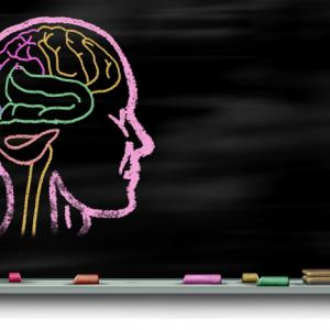 心理学者の給与・年収は?初任給や平均月収などの収入について解説