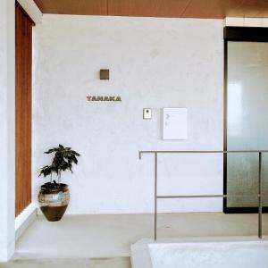 殺風景な玄関アプローチにグリーンを・・・小鹿田焼の壺とカクレミノ。