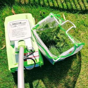 伸びた芝におすすめ、アイリスオーヤマの電動芝刈り機。