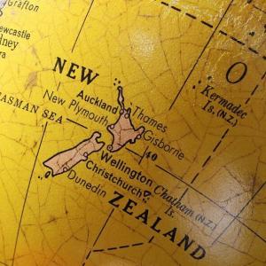 本当のバリアフリーって何だろうか?赤ちゃんとニュージーランド議会