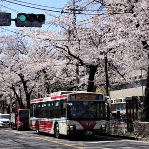 関東バス B1804・B1958