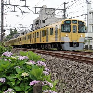 久しぶり撮り鉄 新宿線