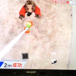 妙子さん、苺ゲット成功!