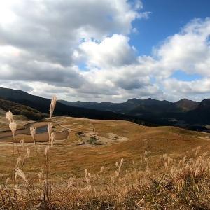 絶景のススキ!奈良県宇陀郡曽爾高原へ30年ぶりに行く!