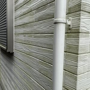 【番外編】住宅 壁のコケ(外壁塗装してそんなに立っていません。。。)