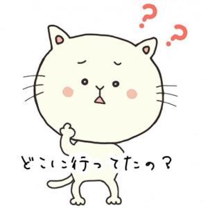 韓国語で『どこに行ってたの?』のご紹介ですッ。