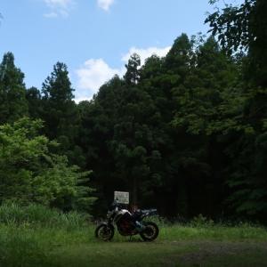 林道横沢・小机線を走って天竺山登って来たよ!