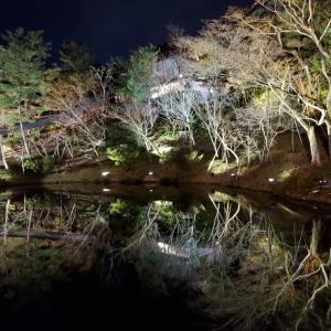 ずるい、冬の京都