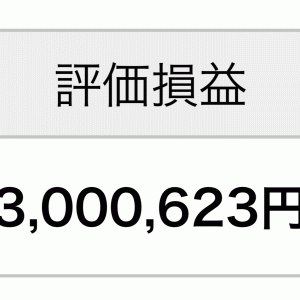 【確定拠出年金】評価損益+300万円を達成しました
