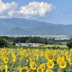 (2021年7月)スターランド阪谷(福井県大野市阪谷)