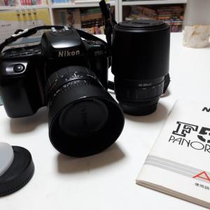 カメラデビューしました(*^^*)