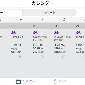 レースまでのトレーニング計画完了
