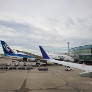 北海道札幌に移動しました!