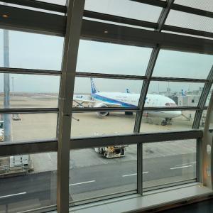 東京から大阪へ…絶対生き抜いてやる‼️