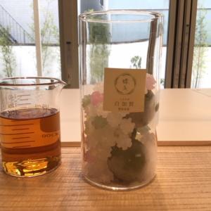 【鎌倉】梅体験専門店 蝶矢で梅酒作り体験をしてみた!!【2号店】