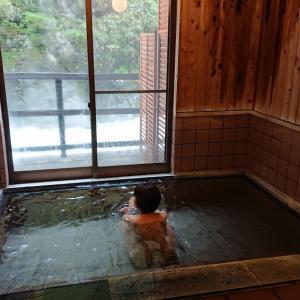 秘境の癒し湯【黒薙温泉旅館】