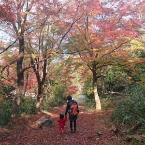 初めてのお山☆彡室池紅葉
