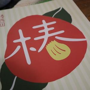 関西応援旅!椿温泉【海鮮居酒屋の宿 若 竹】和歌山へ美味しい魚食べに来た!