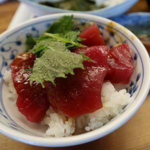 まぐろ料理 竹原【勝浦と言えばマグロが食べたい!!】関西応援旅