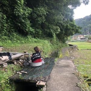井関温泉 たらいの湯 【和歌山野湯巡り】