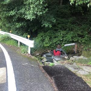 岩鼻温泉 ステンレス流し台の湯【和歌山野湯巡り】