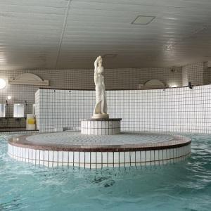 トロトロ!美肌の湯♪ 【ゆたか温泉】 鹿児島一の濃厚な重曹泉