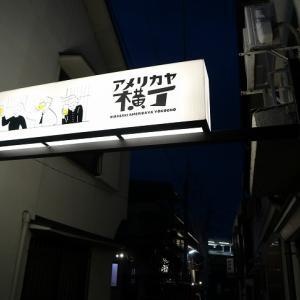 昭和レトロな呑み屋街 【 アメリカヤ横丁 】 山梨韮崎駅前